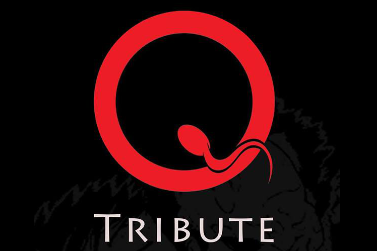 WIN: QOTSA Tribute 2016